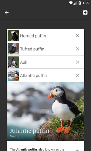 Wikipedia APK 2 7 280 r 2019 04 26 - download free apk from