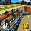 City Animal Transport Truck APK