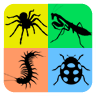 Insect Life Cycle APK