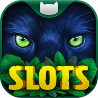 Slots on Tour APK