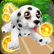Dog Run - Puppy Running APK