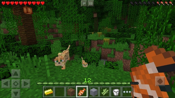 1.2.10.2 APK EDITION TÉLÉCHARGER MINECRAFT HERE POCKET
