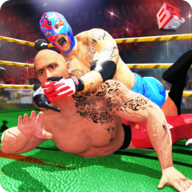 Wrestling Evolution APK