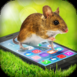 Mouse in Phone APK