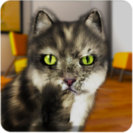 Talking Cat Funny APK