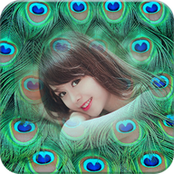 Peacock Feather Photo Frame APK