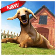 Dog Games APK