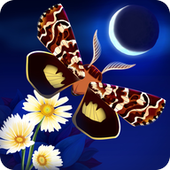 Starlight APK