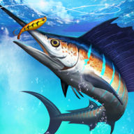 Fishing Championship APK