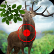 Hunterss of Wild Deer APK