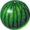 watermelon prober APK