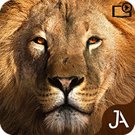 Safari Evolution APK