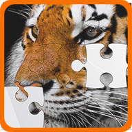 Jigsaw Puzzle World Free Memmory Game APK