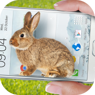 Bunny In Phone Cute joke APK