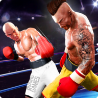 Boxing Revolution APK
