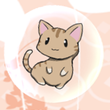 Cat In Bubble Live Wallpaper APK