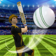 Cricket Multiplayer APK