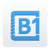 B1 File Manager APK