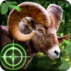 Wild Hunter APK
